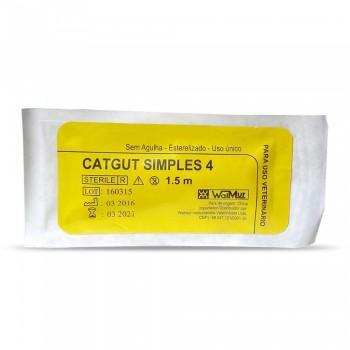 Catgut Simples 4